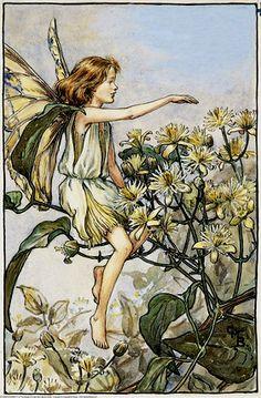 Anjana del bosque: Hadas flores del verano