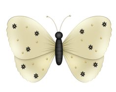 DBA BUTTERFLY 3.png
