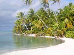 Image result for desert islands