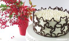 Awesome Christmas sweets recipes are available on our website. Have a look and you wont be sorry you did. Christmas Sweets Recipes, Christmas Baking, Fancy Birthday Cakes, Chocolate Art, Cupcakes, Cake Tutorial, Sweet Cakes, Chocolates, Sweet Recipes