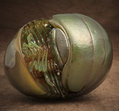 A giant green pill millipede - by Igor Siwanowicz.