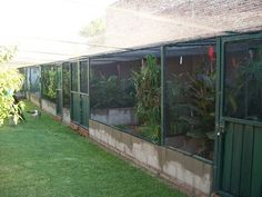 Aviary Row