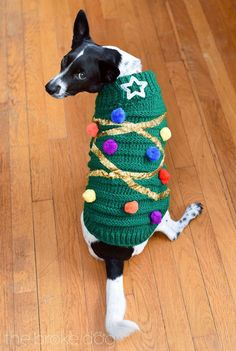 Dog Clothing DIY Christmas Tree Sweater For Your Dog - The Broke Dog - This DIY Christmas tree sweater for your dog is easier than it looks and will certainly amp up the festive factor at any seasonal gathering Dog Christmas Clothes, Diy Ugly Christmas Sweater, Christmas Outfits, Ugly Sweater, Christmas Animals, Christmas Dog, Christmas Knitting, Christmas Photos, Christmas Crafts