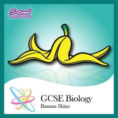 GCSE Biology Banana Skins - Revision Flash Cards