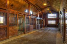 Stall Doors 50
