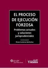 El proceso de ejecución forzosa : problemas actuales y soluciones jurisprudenciales / Álvaro Gutiérrez Berlinches (coordinador)