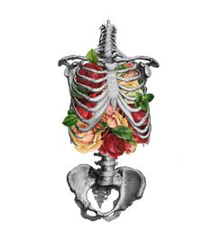 With grace in your hair and flowers in your ribcage.