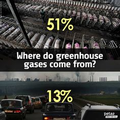Where do greenhouse gases come from?