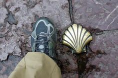 Walking the Camino - Scallop - Wendy Bumgardner ©