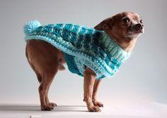 XS Chihuahua Bunny Sweater-----------to Cute