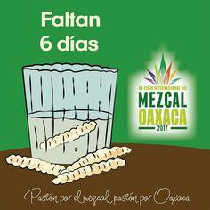 """""""para todo mal #Mezcal para todo bien también""""  Faltan solo 6 días para la XX #FeriaInternacionaldelMezcal #Oaxaca ven y conoce la historia del mezcal, bebida típica de México, bebida caída del cielo #bebidadelosdioses  #FIM2017  del 15 al 25 de julio en el Paseo Juárez """"El Llano"""" Oaxaca- México   ¡Te esperamos!      ¡Pasión por el mezcal pasión por Oaxaca!  #TradiciónQueEnamora #Guelaguetza2017 #GuelaguetzaOficial #Oaxaca #FeriaInternacionaldelMezcal2017 #Mixología #Mayahuel #BebidaDioses"""