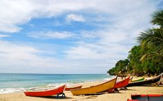 Weekly Travel Deals: New York, Cuarcao, and Off a Trip to Puerto Rico - Veralavista Best Places To Travel, Best Cities, Oh The Places You'll Go, Places To Visit, Travel And Leisure, Travel Deals, Travel Destinations, Puerto Rico, El Yunque National Forest