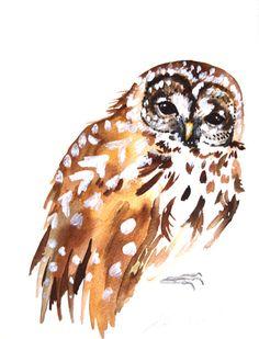 Owl Study by Kristina Closs