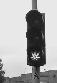 Top 10 Common Myths About Cannabis - Listverse Gray Aesthetic, Black Aesthetic Wallpaper, Black And White Aesthetic, Bad Girl Aesthetic, Aesthetic Wallpapers, Black And White Picture Wall, Black And White Pictures, Ganja, Rauch Fotografie