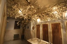 Artificial White Cherry Blossom Tree Vine at Lady Toilet Louis Brown Dalgety Bay