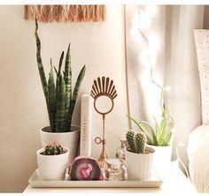 Cactus next to bed Kinfolk, Bedside, Zen, Cactus