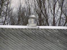 Moderní ustájení dojnic zahrnuje vždy kvalitní odvětrávání   AGROjournal Roof Tiles, Outdoor, Outdoors, Outdoor Games, The Great Outdoors