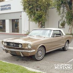 1965 Mustang Convertible Champagne Beige.