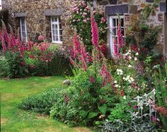 I love the wild planting here, the Foxgloves ooze colour and bring height for the country cottage look.