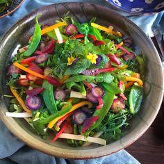 Spring Salad with Wild Herbs Recipe on Food52 recipe on Food52