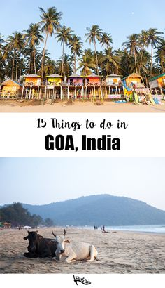 15 Things to do in Goa, India Travelettes Goa Travel, India Travel Guide, Travel In India, Travel Destinations In India, India Trip, Goa India, South India, Places To Travel, Places To Visit