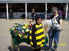 Horse Fancy Dress Ideas: Bee