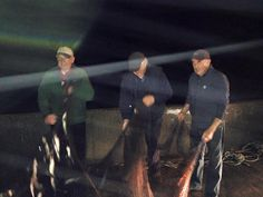 DEFIANT ARRANMORE FISHERMEN CATCH HERRING AGAIN – FROM THE PIER! | Donegal Daily Dunmore East, Irish Sea, Going Fishing, Donegal, First Time, Coast, It Cast, Memories, Concert