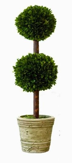 "Preserved Boxwood Topiary Double Ball - 30""  #preservedboxwood #boxwoodtopiary #homedecor"