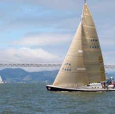 Get Off Your Blanket & Onto the Water: Here's How to Really Enjoy the SF Bay