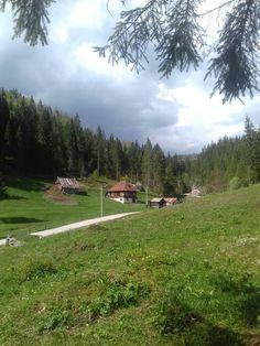 Apuseni mountains Romania, Beautiful Homes, Golf Courses, Mountains, House Of Beauty, Bergen