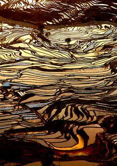 DSC_8075 coucher de soleil sur les riziéres chine | by ichauvel