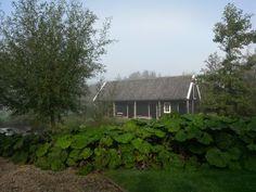 Groot hoefblad is hier een verbindend element tussen erf en natuur. Groot, Cabin, House Styles, Garden, Home Decor, Garten, Decoration Home, Room Decor, Cabins