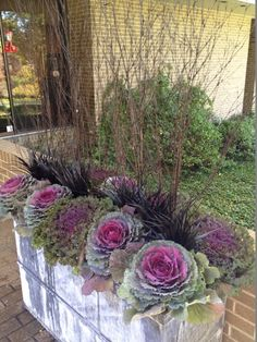 Gardening With Containers Black twigs, ornamental kale. Perfect planters - Try these fabulous fall container ideas to brighten your porch, deck or garden! Love these fall planter ideas! Fall Planters, Outdoor Planters, Garden Planters, Autumn Planter Ideas, Terrace Garden, Planters For Front Porch, Indoor Outdoor, Garden Basket, Garden Oasis