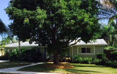 Single family home sales are down but much of the blame can be put on inventory that tends to be priced ahead of the market or in poor condition. At many price points well priced homes, like this Tequesta, Florida beauty, still sell in hours not days.  If you are looking to buy in today's market you need a game plan. We know the tricks to help you succeed and love to bring value and customer service back into the real estate transaction. If you want to win call Paradise Sharks at…