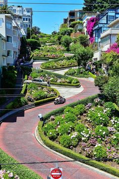Lombard Street,San Francisco, California: Drove down this at night. Such a crazy view. Weekend In San Francisco, San Francisco Travel, San Francisco California, California Dreamin', San Francisco Food, San Francisco Street, San Francisco Twin Peaks, San Francisco Must See, Lafayette California