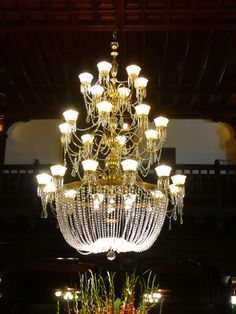 Lighting design at Hotel del Coronado   Gorgeous chandelier with a lot of little lights   #chandelier #lightingdesign #luxuryhomes: For more inspirations: http://www.luxxu.net/