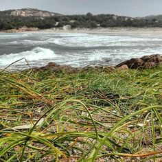 by http://ift.tt/1OJSkeg - Sardegna turismo by italylandscape.com #traveloffers #holiday | #costasmeralda#grandepevero#portocervo#lanuovasardegna#landscape#nature#natura#green#sea#mar#wave#beautiful#amateurphotography#amazing#sardinia#sardegna#sardegnalovers#ig_europe#volgosardegna#igersassari#igers#instagramers#Paradise# Foto presente anche su http://ift.tt/1tOf9XD | March 24 2016 at 07:17AM (ph alessandrobertone ) | #traveloffers #holiday | INSERISCI ANCHE TU offerte di turismo in Sardegna…