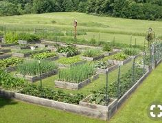 9 Precious Clever Tips: Backyard Garden Beds Food backyard garden layout trellis.Small Backyard Garden To Get. Big Garden, Dream Garden, Garden Beds, Garden Farm, Narrow Garden, Farm Yard, Potager Garden, Garden Landscaping, Modern Landscaping