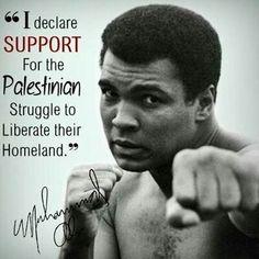 Free Palestine                                                                                                                                                                                 More