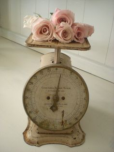 Vintage scale and roses