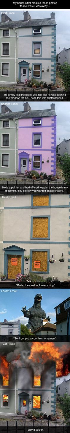Emails from the house sitter  - funny pictures #funnypictures