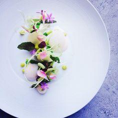 Fennel panna cotta,asparagus , chive oil, peas, grape by czarneckigreg on IG #plating #gastronomy