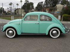 Tiffany Blue Beetle... Love!
