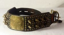 Antique Victorian Leather and Brass Studded Dog Collar c1890
