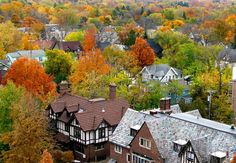 Ann Arbor in the fall