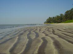 Kihim Beach near by the Mandwa village in Maharashtra, India.
