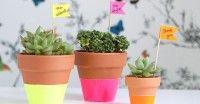 Leuk idee voor bloempotten!