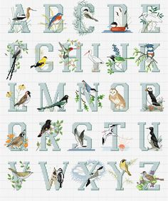 Cross stitch / Point de croix / Punto cruz / Punto croce North American bird alphabet (titled Alphabirds) / abecedaire / abecedario / alfabeto