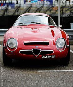 Timeless champion Starring: Alfa Romeo TZ by Jeroen Sick Lamborghini, Ferrari, Maserati, Alfa Romeo Cars, Alfa Cars, Alfa Alfa, Classic Sports Cars, Classic Cars, Luxury Sports Cars