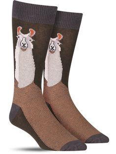 Add some llama drama to your look with these men's crew socks featuring a handsome portrait of the awesome animal. Llama Socks, Socks World, Alpaca Stuffed Animal, Funny Llama, Llama Alpaca, Sock Animals, Novelty Socks, Cool Socks, Mens Fitness